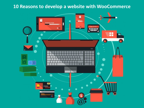 Why WooCommerce Is Perfect For Next Ecommerce site by JaneReyes