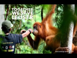 Together We Save Leuser by dudiksdjpt