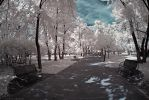 Infrared - Memory Lane by Raineater