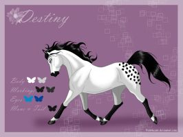 Destiny - reference sheet by Wild-Hearts