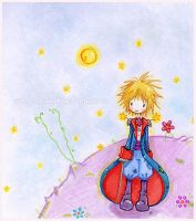 le petit prince. by coniro