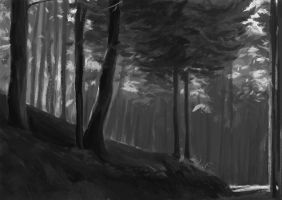 Forest Day by TheNecco
