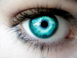 Turquoise Eye by Sheppard56