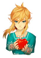 wii u zelda -- Linkapple (+spdpaint) by onisuu
