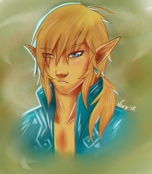 Adult Wii U Link by funkynary
