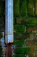 Rusted Gutter and Green Bricks by PAlisauskas