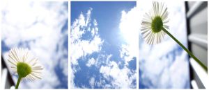Lift Your Face to the Sky Trio by rebeccavoy