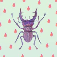 Stag Beetle by V-L-A-D-I-M-I-R