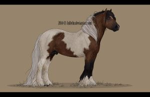 Gypsy Vanner Commission #1 by Jullelin
