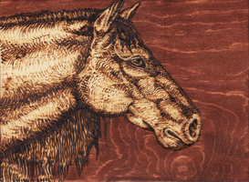 Stallion Spirit Wood Burning by MorRokko