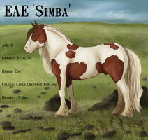EAE Simba by ElreniaGreenleaf