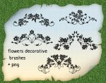 Flowers Decorative Brushes by roula33