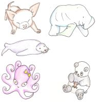 More Little Animals by pun