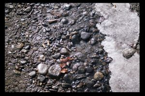 Stones in a Melted Snow Stream by NightShades
