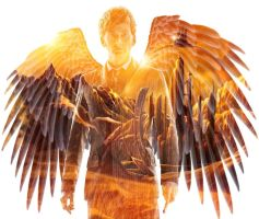 Angel of Gallifrey by VulcanSarek22