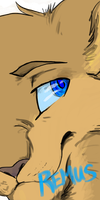 The thoughtful Eyes Of Remus by XxSoaringHeartxX
