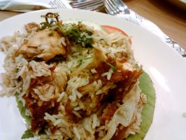 Chicken fried rice by plainordinary1