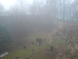 Foggy at the cemetery 40 by rudeturk