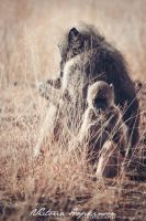 Mother and baby by victoriahopkinson