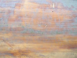 Texture - Wood 22 by SanStock