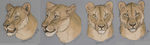 More Lioness Faces by The-Hare
