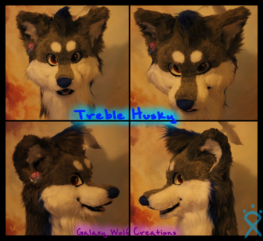 Treble Husky by GalaxyWolfCreations