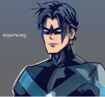 Nightwing by Mitzka