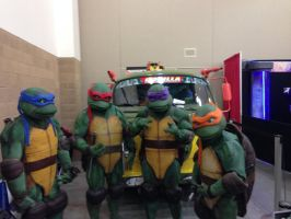 TMNT are back in action by Darkshadow49