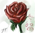 Rose by AlleyMartyrs