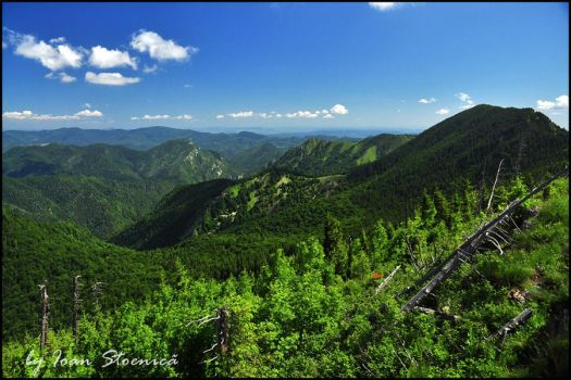 This is Vrancea by Ioan-Stoenica