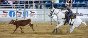 STOCK 2013 Rodeo-94 by fillyrox