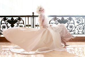 BRIDES ME WELL x by ViAgRanC-e