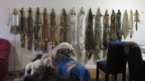 I need more hooks... by BlackBackedJackal