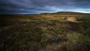 Shelf Moor by danUK86