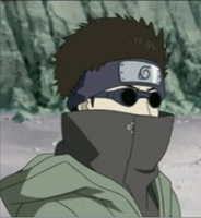 Shino Aburame: the ace by adekun