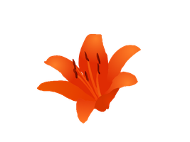 Tiger Lily WITHOUT Dots vector by Wistfulwish