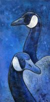 Blue Geese Study by ursulav