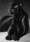 Black Panther by CalebP1716