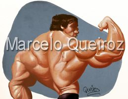Bodybuilding by MQM