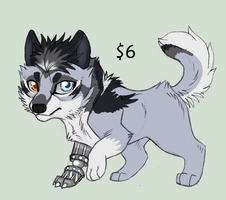 Canine Point Adoptable 1 GONE by KasaraWolf