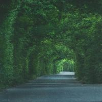 The road to someday, leads to the town of nowhere by LevAni11