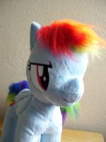 Front view of Dashie by Pinkamoone