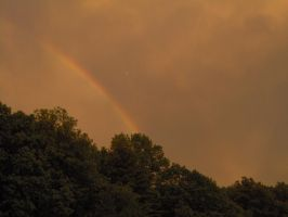 Rainbow Over Trees 05 by Geak-of-Nature