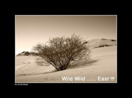 Wild Wild              East ? by AnubisGraph