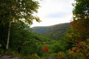 Discovering The Catskills by RealityIntolerant