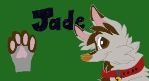 Jade's unfinished character sheet by jadewolf34
