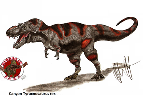 JP-Expanded Canyon Tyrannosaurus by Teratophoneus