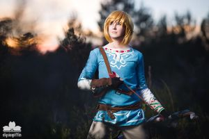 2015 - Cosplay | Legend of Zelda Link by elysiagriffin