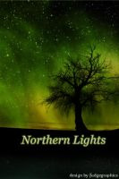 Northern Lights iPhone by fudgegraphics