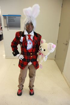 The White Rabbit Cosplay by MidoriChan15